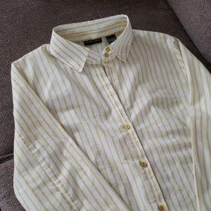 NWOT NY&Co chartreuse & white striped dress shirt